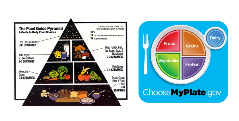 Image result for food pyramid vs myplate images